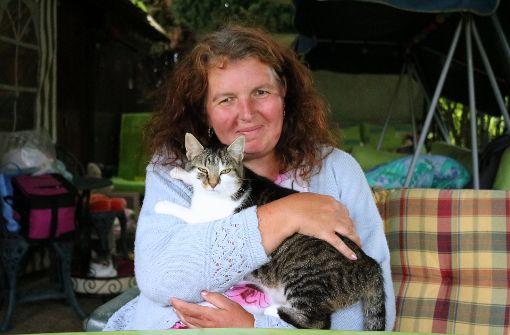 Ein Ehepaar kämpft um sein Katzenparadies