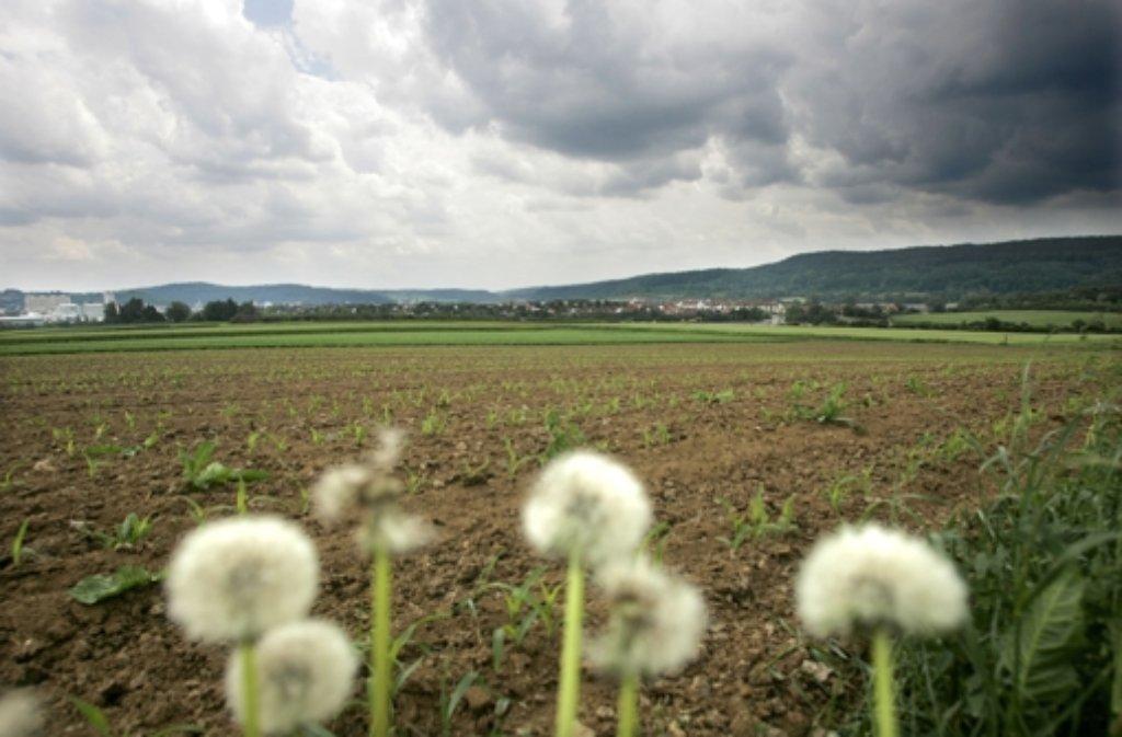 Das geplante Gewerbegebiet Längenbühl bereitet den Silberbergern Sorgen. Foto: privat