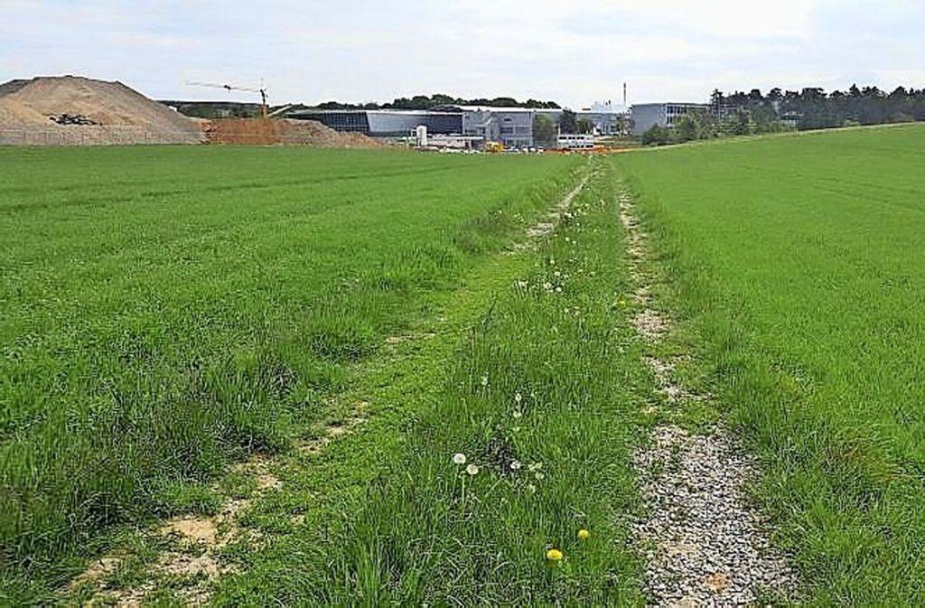 Zu gefährlich? Radler und Fußgänger nutzen diesen Schotterweg. Foto: Gemeinde Weissach
