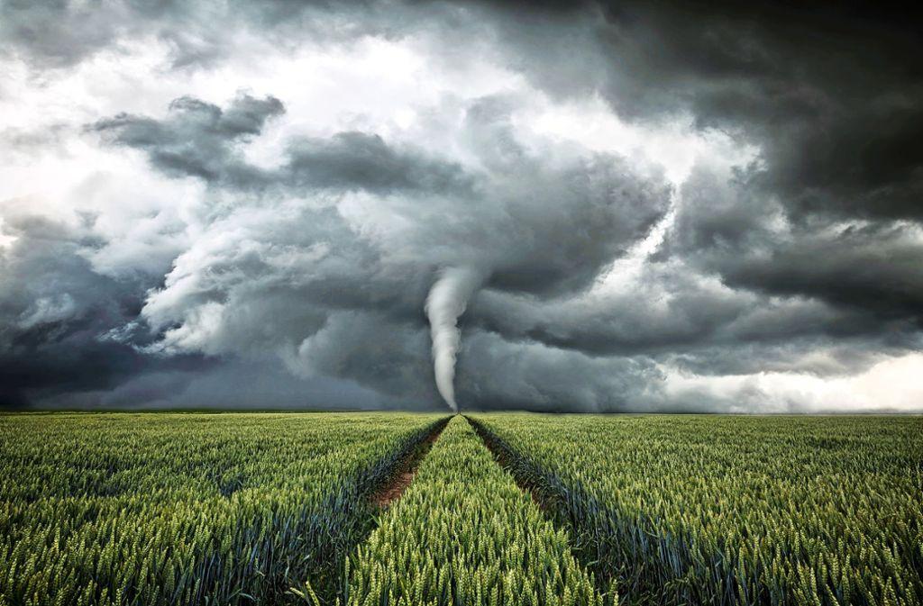 Wie das Wetter wird, war und ist für Bauern wichtig. Ihre Beobachtungen über lange Zeit sind zu Bauernregeln geworden. Foto: Stock Adobe/Oliver Henze
