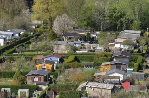 Einbruch in Gartenhäuser – Polizei nimmt mutmaßlichen Täter fest