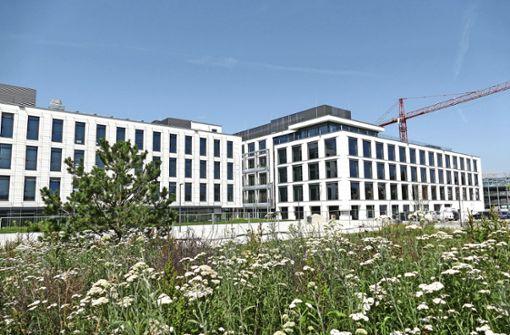 Volksbank bezieht Neubau im Herbst