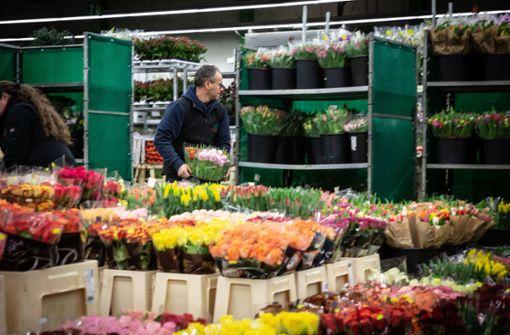 Blumengenossenschaft vor dem Aus