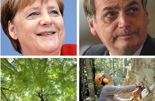 """""""Nehmen Sie diese Knete und forsten Sie Deutschland wieder auf"""""""