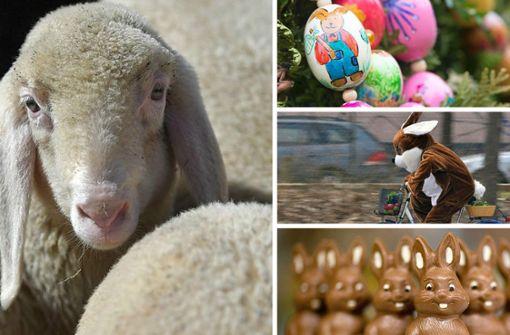 Was wissen Sie über Ostern?
