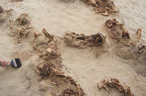 Archäologen entdecken altes Kinder-Massengrab