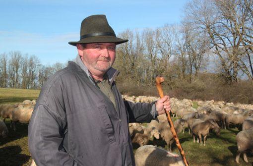 Das ganze Jahr mit 400 Schafen unterwegs – bei Wind und Wetter