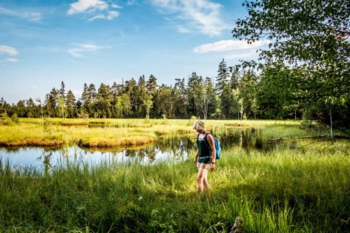 Idyllisches Baden-Württemberg -   zum Image  trägt  der  Wildsee zwischen Bad Wildbad und Gernsbach  im Nordschwarzald bei. Foto: Alex Kijak