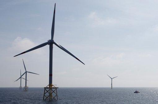 Windkraft könnte beim Energiemix bald dominieren, sagt eine neue Studie. Foto: dapd