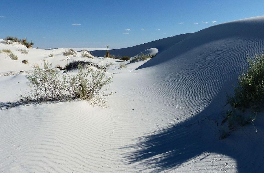 So schön ist die faszinierende Sandwüste der Kurischen Nehrung. Auch wenn man es hier nicht sieht, der berühmte Ostseeküsten-Radweg führt mitten hindurch.  Foto: Pixabay