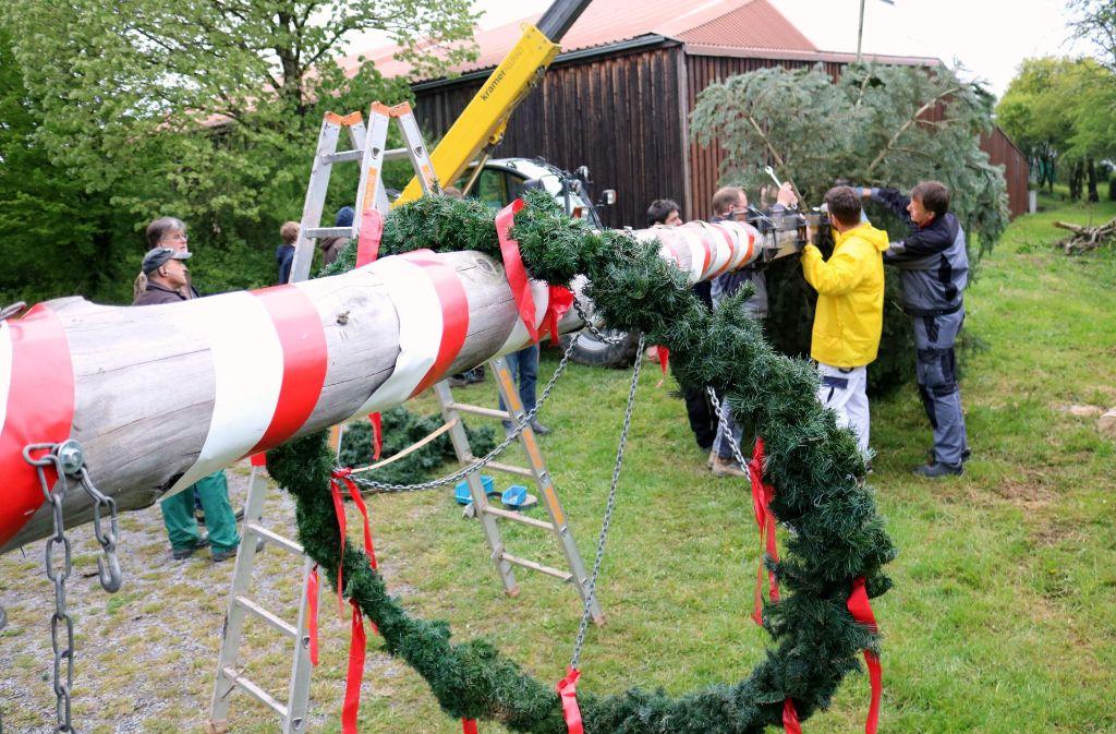 Die Helfer vom Gewerbeverein Oeffingen schmücken den Maibaum am Tennhof. Foto: Eva Herschmann