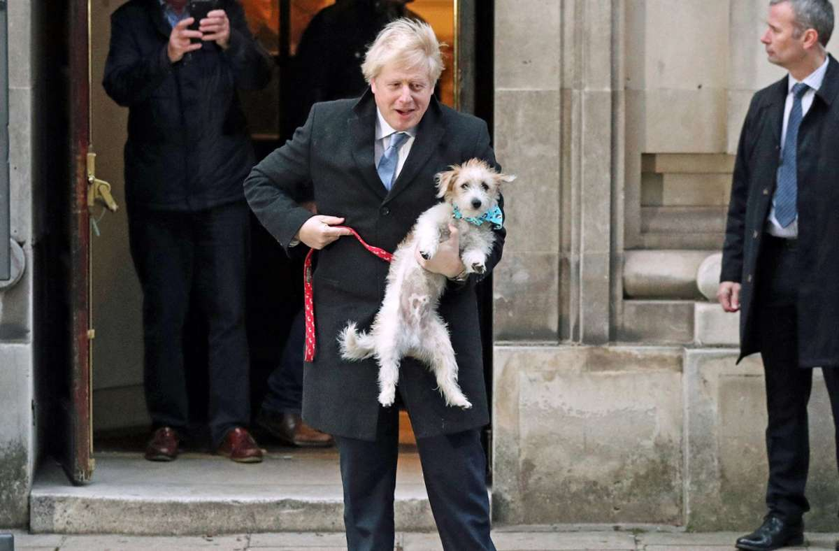 Boris Johnsons Hund Dilyn hält den Premierminister fit. Foto: dpa/Jonathan Brady