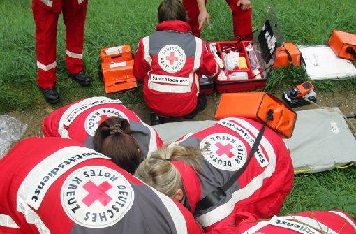 Remlinger bleibt Vorsitzender des Roten Kreuzes