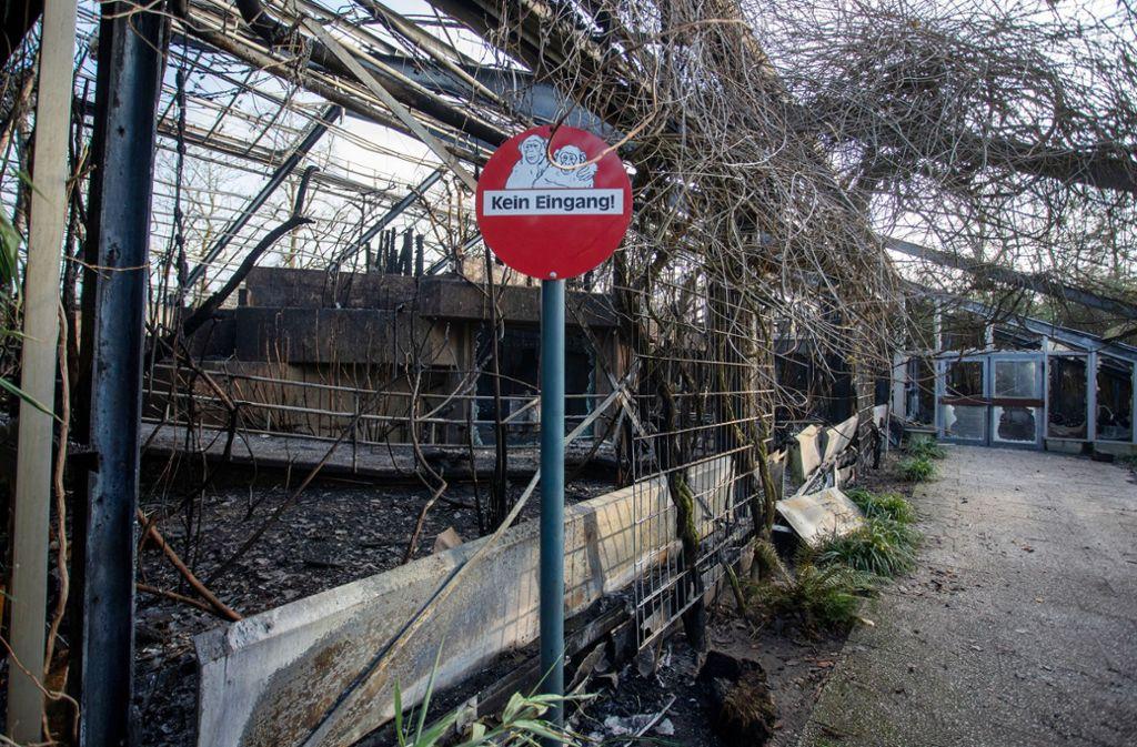 Insgesamt mehr als 50 Tiere bei dem Brand im Krefelder Zoo gestorben. Foto: dpa/Christoph Reichwein