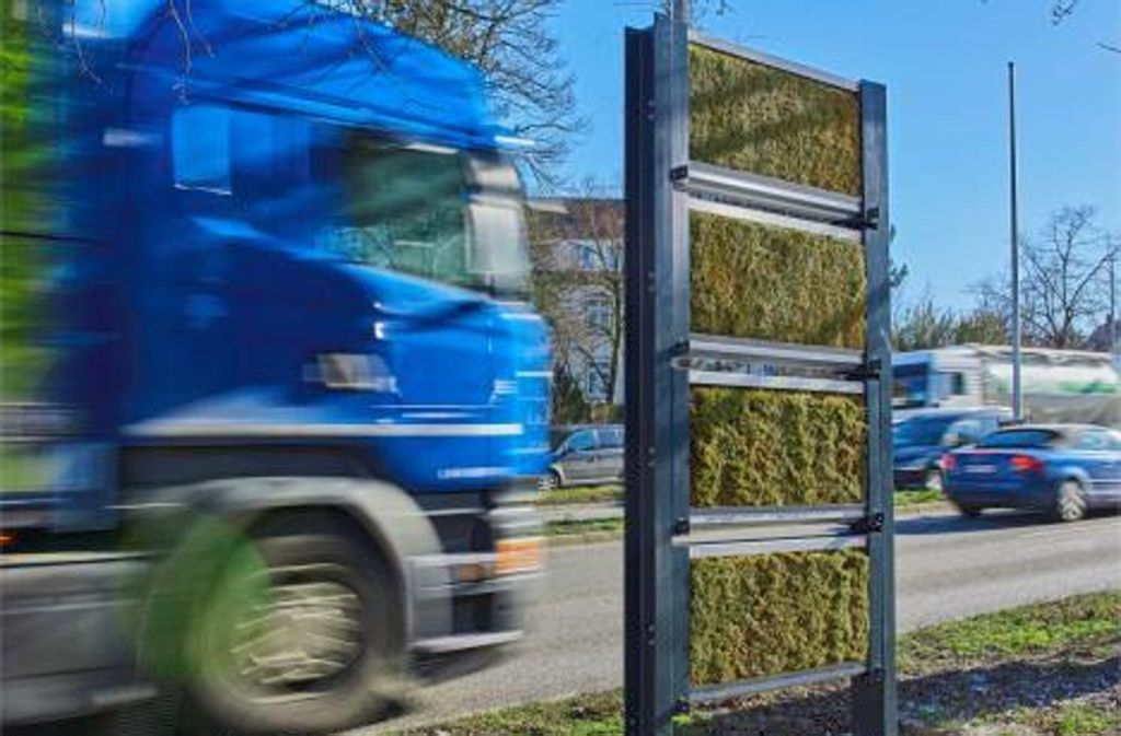 Mit derartigen Mooswänden soll am Neckartor die Wirkung der Pflanzen auf die Feinstaubbelastung untersucht werden. Foto: Ed. Züblin AG