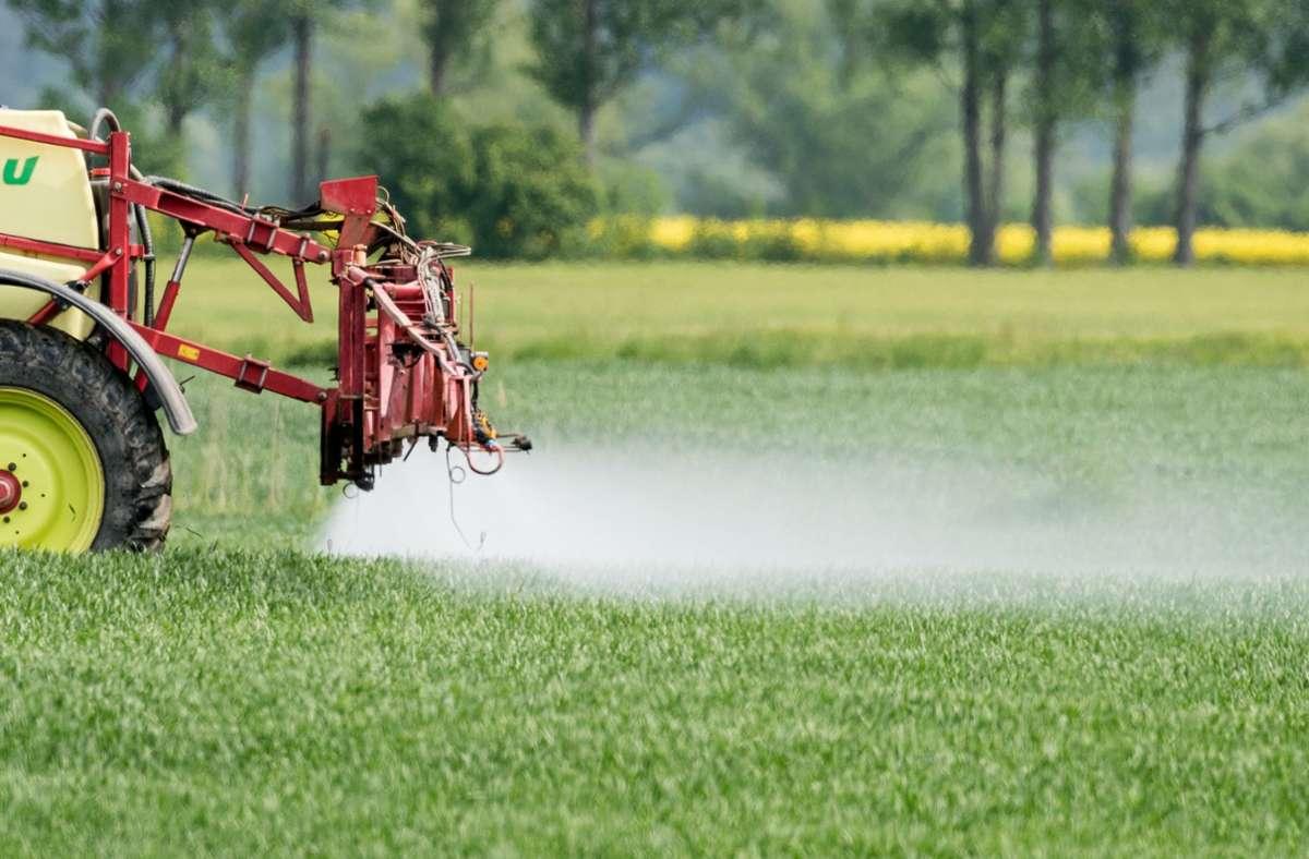In der konventionellen Landwirtschaft wird Ungeziefer mit Pflanzenschutzmitteln bekämpft. (Symbolbild) Foto: dpa/Patrick Pleul