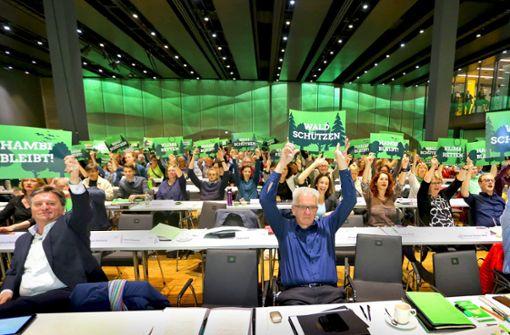 Grüne solidarisieren sich mit Demonstranten im Hambacher Forst