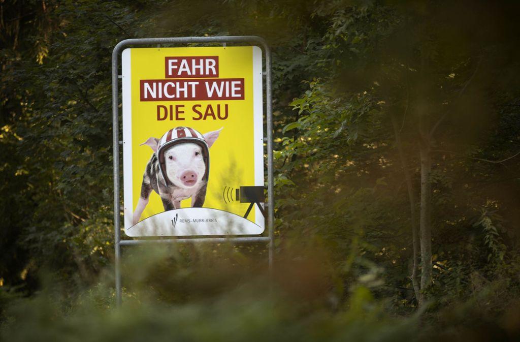 Bei Kaisersbach soll ein behelmtes Schweinchen rücksichtlose Motorradfahrer zur Einsicht bringen. Foto: Gottfried Stoppel