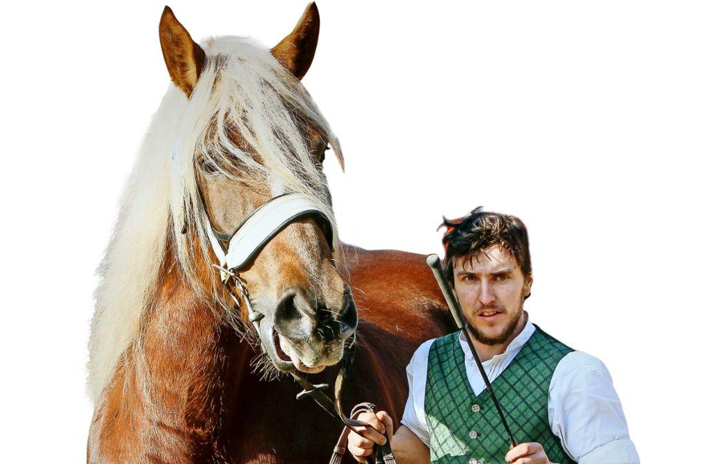 Züchter und Händler zeigen stolz ihre Pferde . Foto: