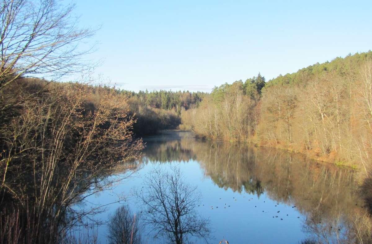 Der Landkreis will das Hochwasserrückhaltebecken Sulzbachstausee touristisch aufwerten. Eine mögliche Hängebrücke wird allerdings von vielen kritisiert. Foto: Claudia Barner