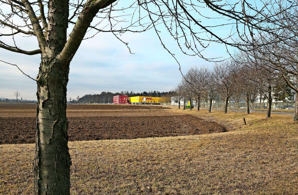 Wo jetzt noch Ackerfläche zu sehen ist, sollen künftig Firmen bauen. Foto: Horst Rudel