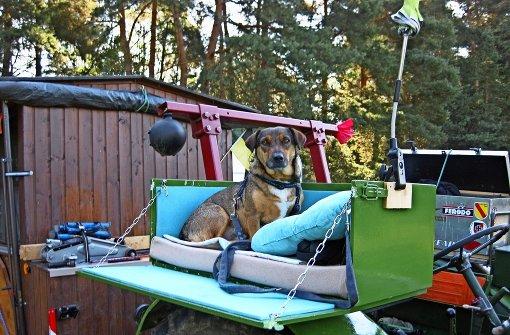 Mit Traktor und Hund quer durch Tschechien