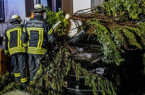 Zwölf Einsätze wegen Unwetter – Baum fällt auf Auto