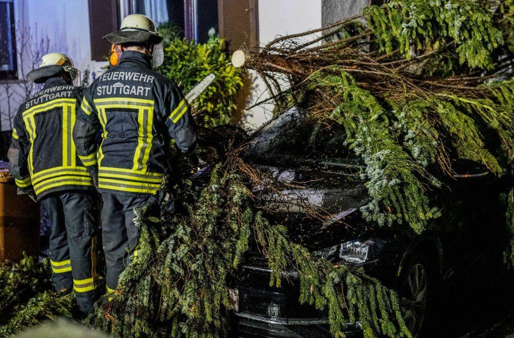 In Bad Cannstatt fiel ein Baum auf ein Auto. Foto: SDMG/Kohls