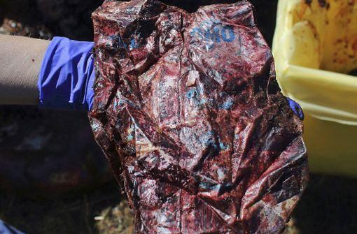 22 Kilogramm Plastik im Bauch eines toten Wals