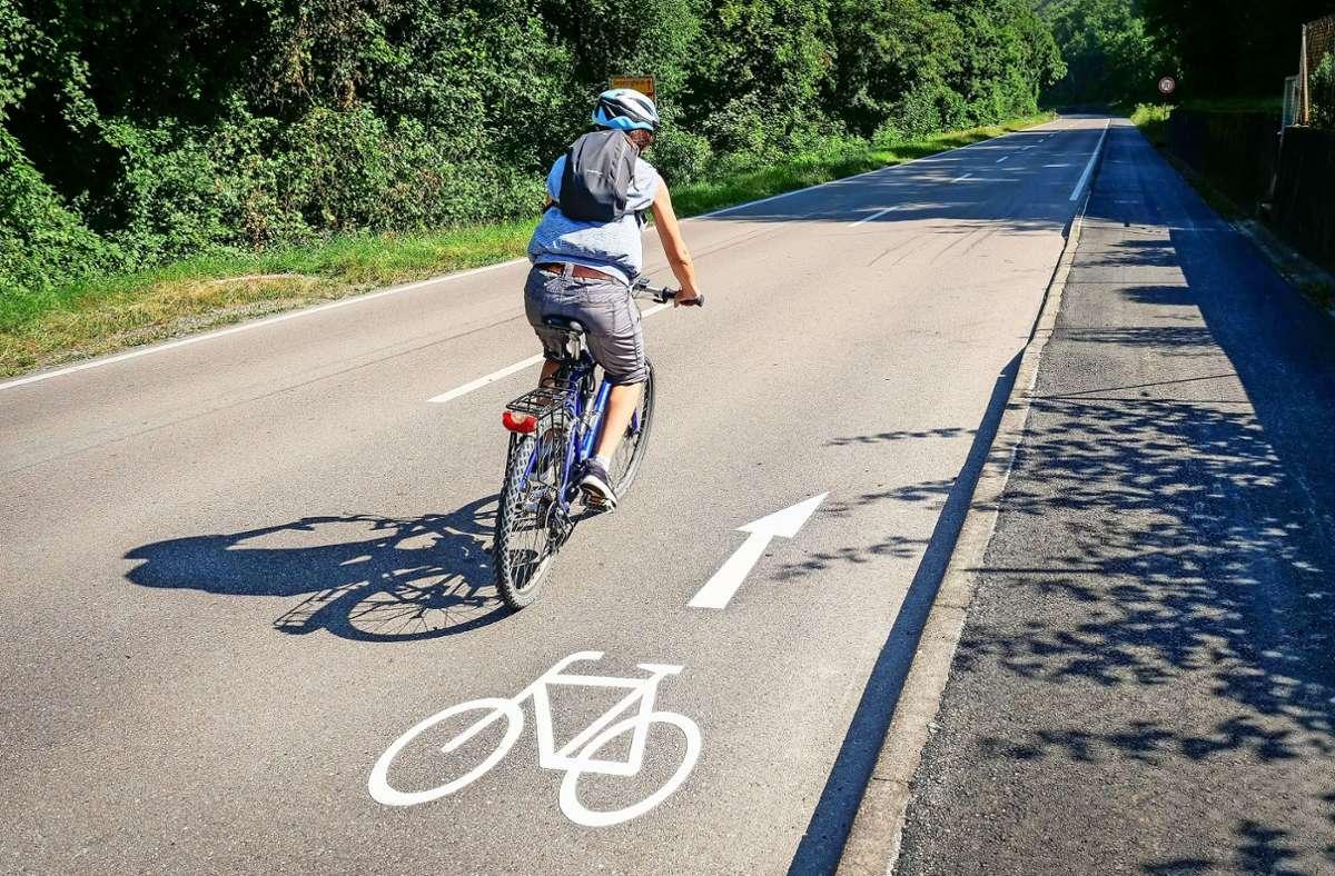 Der Bordstein zum neuen Radweg bei Besigheim lässt sich nur im großen Bogen unfallfrei überwinden. Foto: