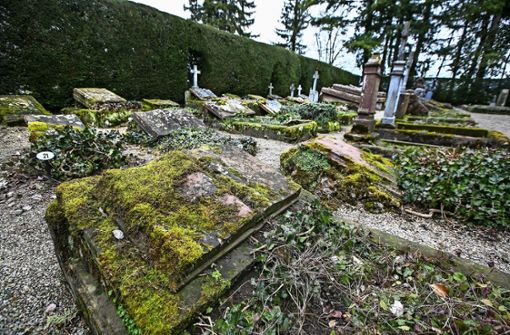 """Die Rettung des """"globalisierten Friedhof"""" ist in Sicht"""