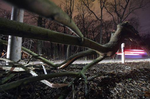 Schwerster Orkan seit mehr als zehn Jahren