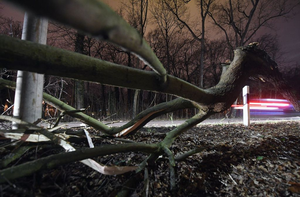 """Orkan """"Friederike"""" hat deutschlandweit Schäden angerichtet. (Symbolbild) Foto: dpa-Zentralbild"""