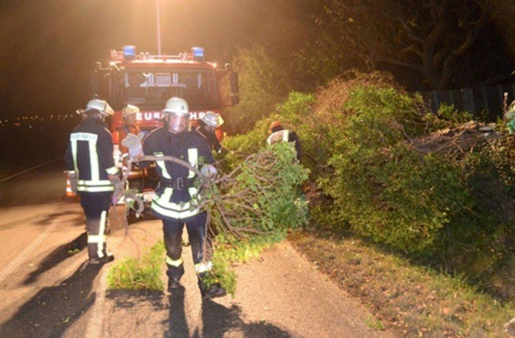 Xaver hinterlässt in der Region Stuttgart nur kleinere Schäden: Ein Baum blockiert am Donnerstagabend die L1200 zwischen Holzmaden und Weilheim an der Teck im Kreis Esslingen.  Foto: FRIEBE|PR/ Sven Friebe