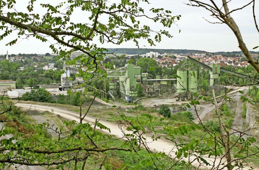 Ob im Steinbruch Fink eine  Biogutvergärungsanlage gebaut wird? Die Bürger dürfen dazu im Sommer ihre Meinung kundtun. Foto: factum/Archiv