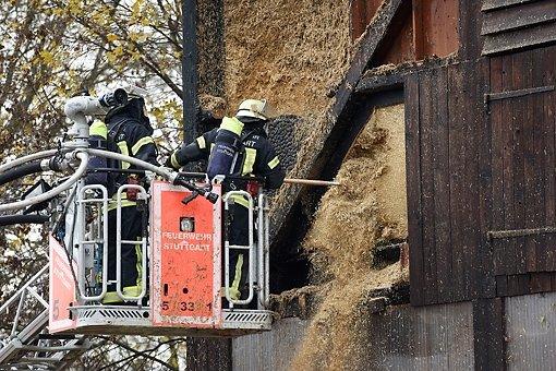 Feuerwehr rückt zu Meiereihof aus