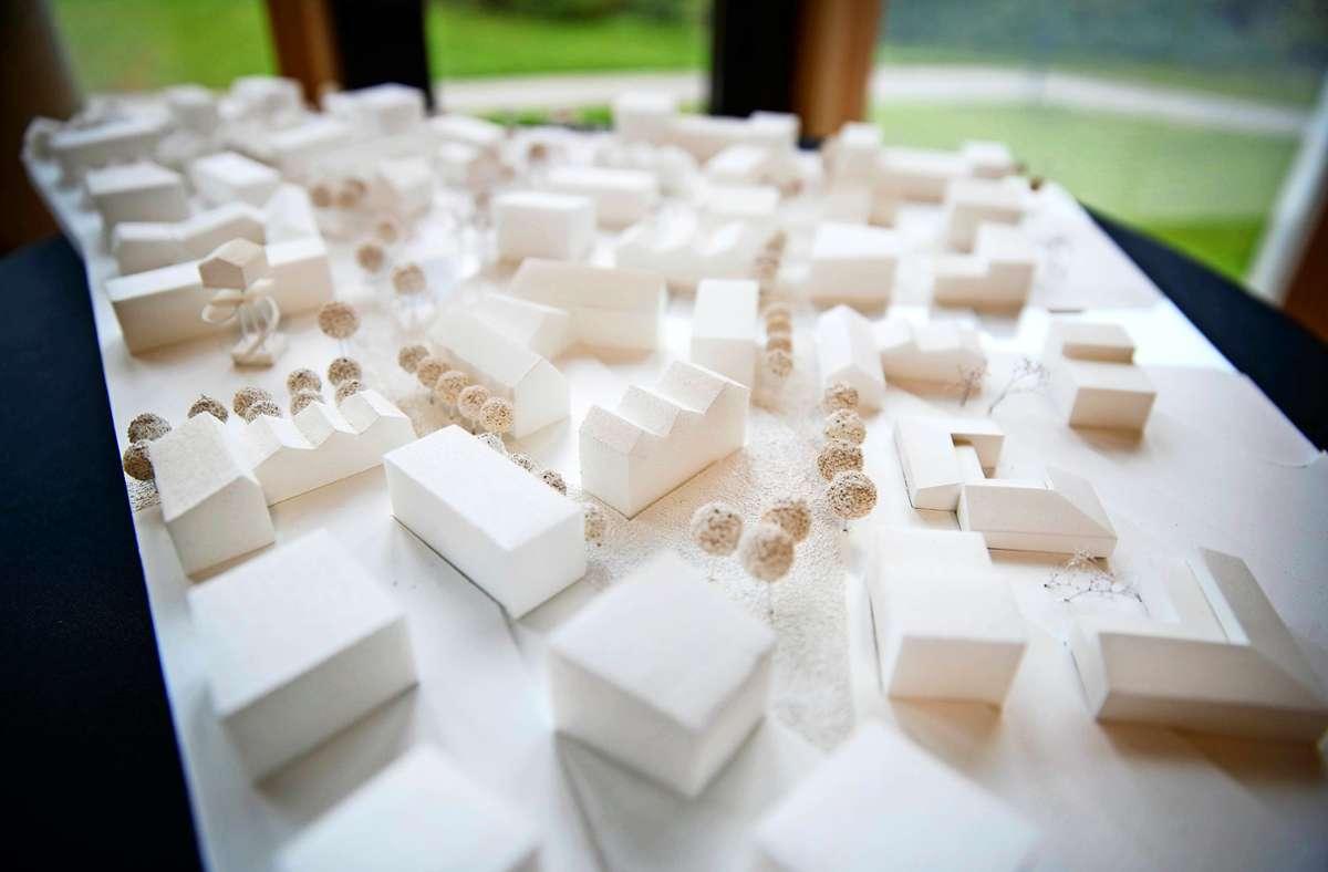 Der Siegerentwurf für die Hangweide – urban geprägt, mit vielen Wohnformen aber ohne massive Bebauung. Foto: /Gottfried Stoppel