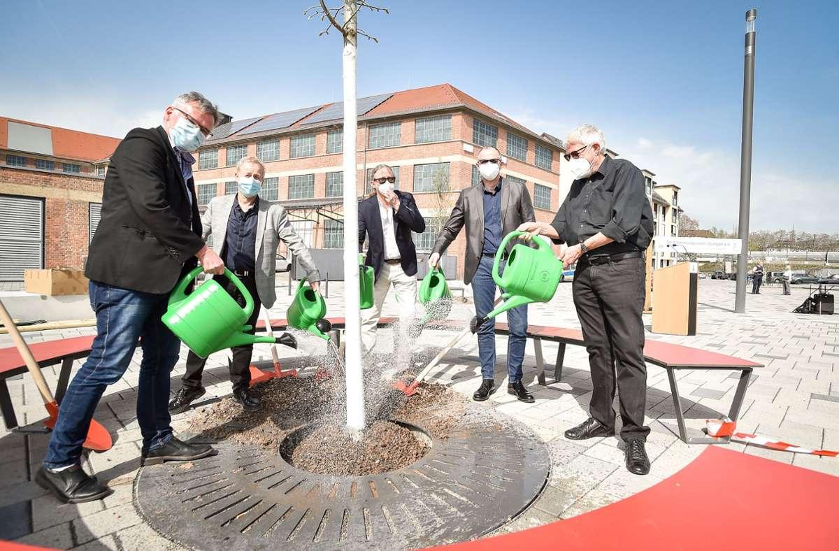Der Verschönerungsverein kümmert sich um mehr Grün und Klimaschutz – erst am 1. April 2021 pflanzte er Bäume vor dem Stadtarchiv. Foto: Lichtgut/Ferdinando Iannone