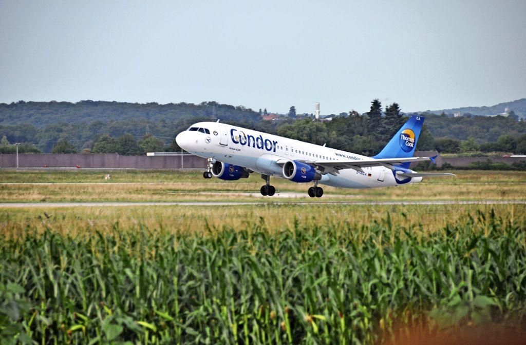 Die Fluggesellschaft Condor steht in der Kritik. Foto: /Tim Höhn (Archiv)