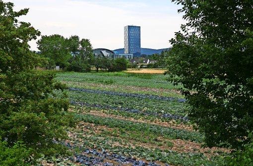 Stadt setzt wieder auf  Flächennutzungsplan