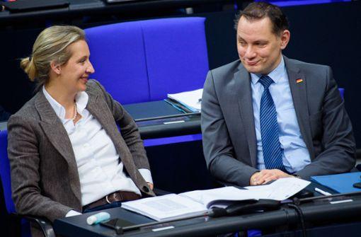 Weidel will mit Chrupalla Spitzenteam für Bundestagswahl bilden