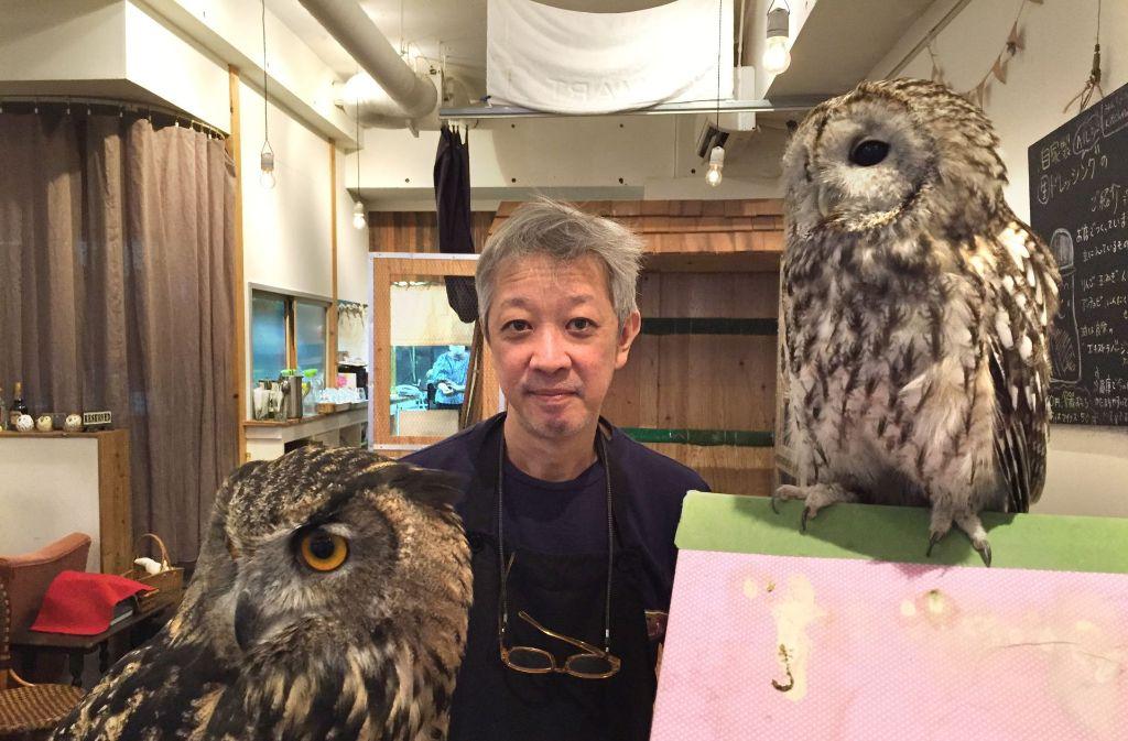 Das Eulen-Café in Tokio findet regen Zuspruch der Tierfreunde. Foto: dpa