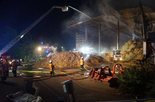 5000 Puten sterben bei Großbrand – Ursache unklar
