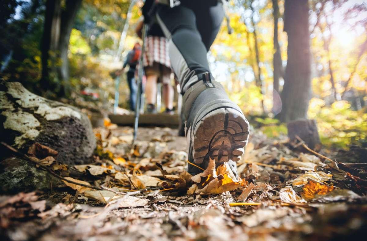 Wandern in der freien Natur ist gesund – in Coronazeiten sollte es aber mit Abstand geschehen. Foto: stock.adobe.com/Leszek Glasner