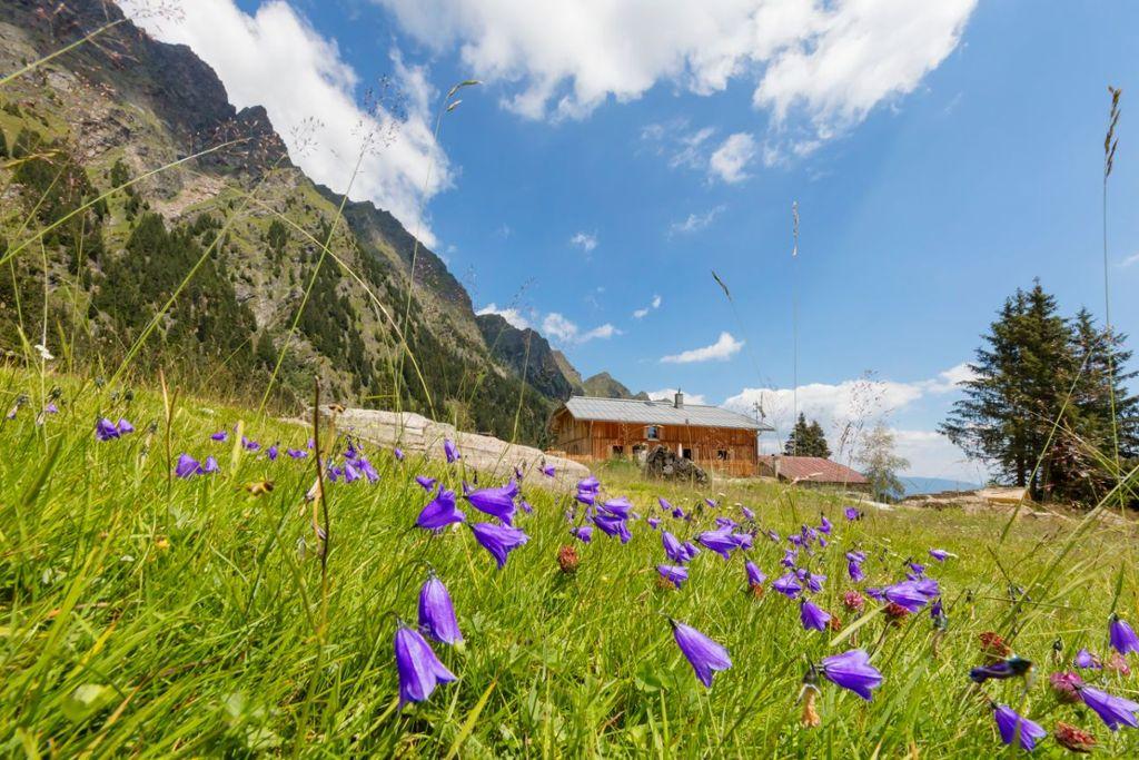 Paradies für Aktivurlauber – Wandern zwischen 300 und 3000 Höhenmetern Foto: TV Algund/Frieder Blickle