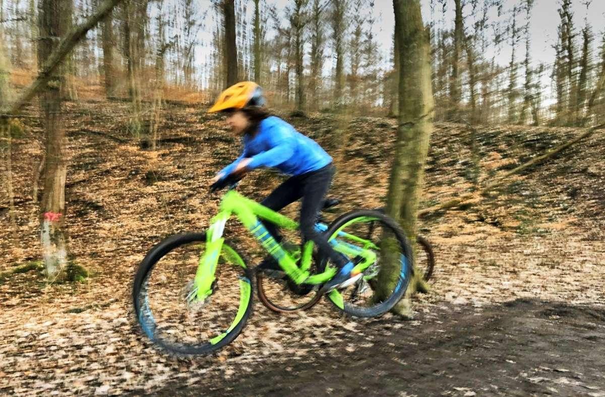Gibt es einige: Trails und Schanzen im Kräherwald. Foto: Kathrin /Haasis