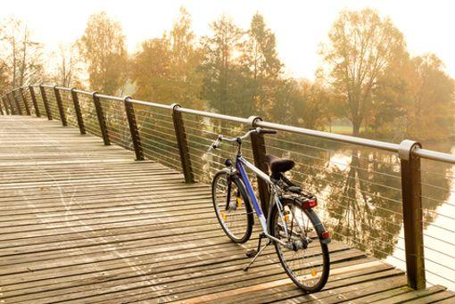 Entdecker auf dem Stahlross erleben Natur und Seen in Brandenburg.