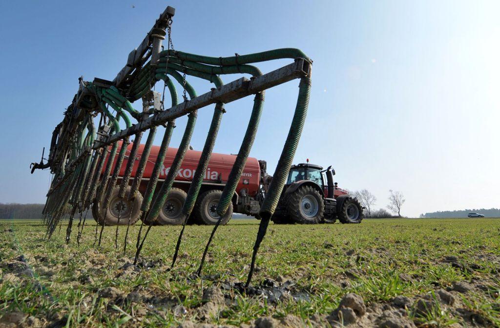 Bis zu  85 Prozent der Nitratbelastung stammen aus der Landwirtschaft Foto: dpa