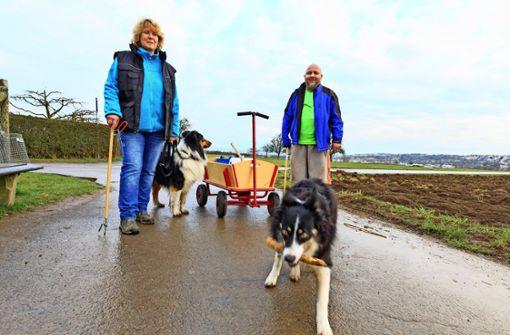 Hundehalter sammeln Hundehaufen ein