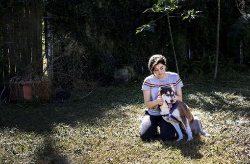 Entlaufener Hund 1800 Kilometer von zu Hause aufgetaucht